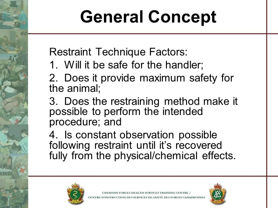 General Concept Restraint Technique Factors: