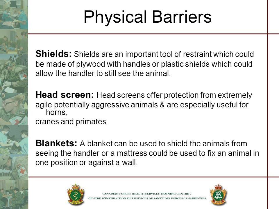 Physical Barriers Shields: Shields are an important tool of restraint which could. be made of plywood with handles or plastic shields which could.