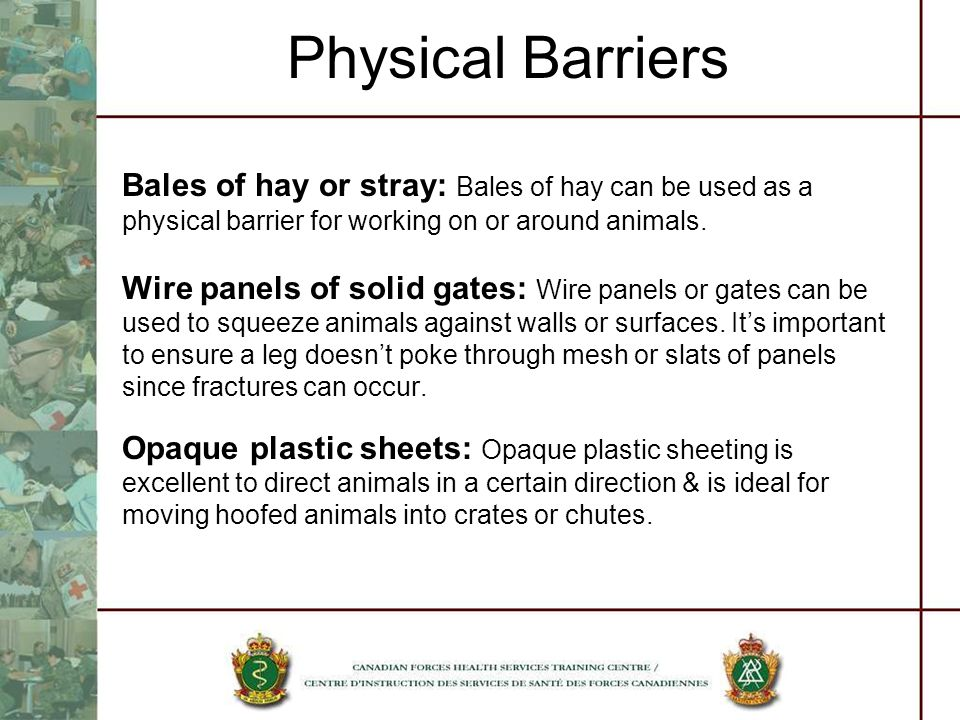 Physical Barriers Bales of hay or stray: Bales of hay can be used as a