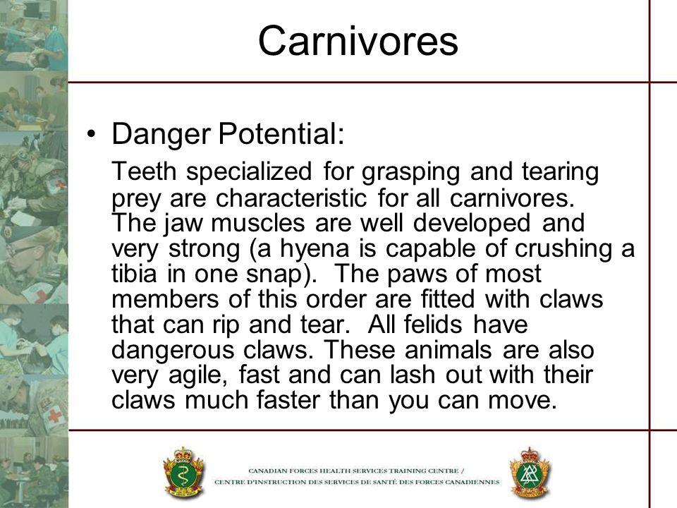 Carnivores Danger Potential: