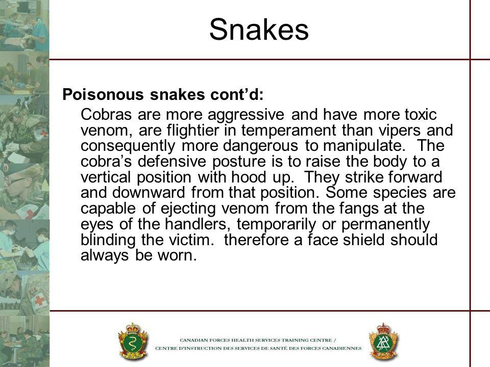 Snakes Poisonous snakes cont'd: