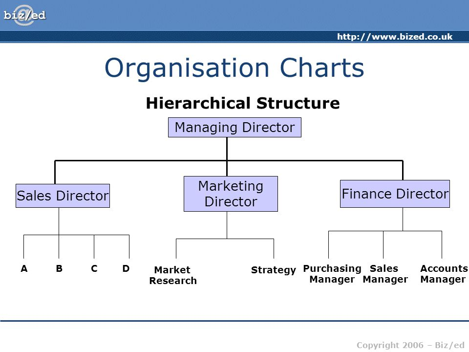 Organisation Charts Hierarchical Structure Managing Director Marketing