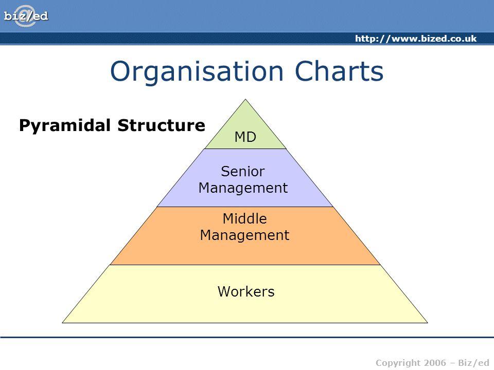 Organisation Charts Pyramidal Structure MD Senior Management