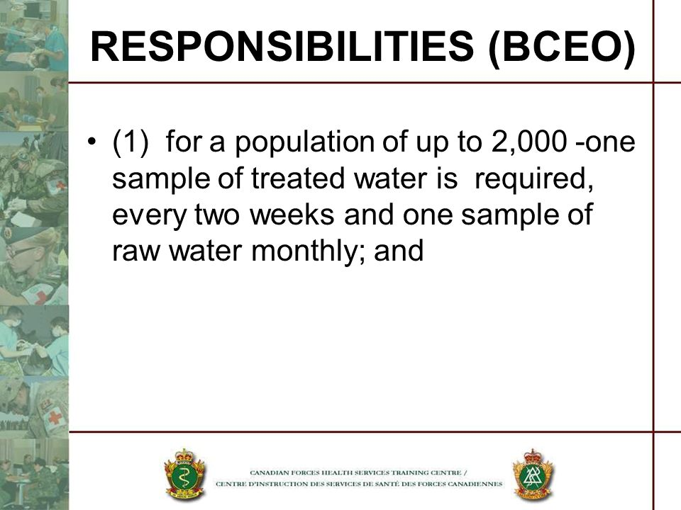 RESPONSIBILITIES (BCEO)