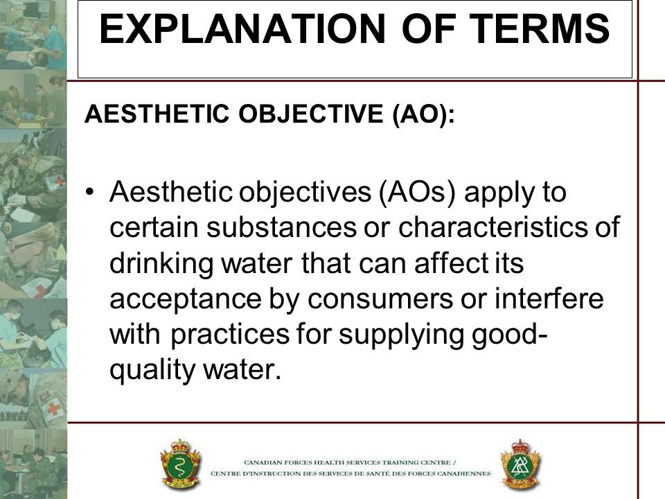 EXPLANATION OF TERMS AESTHETIC OBJECTIVE (AO):