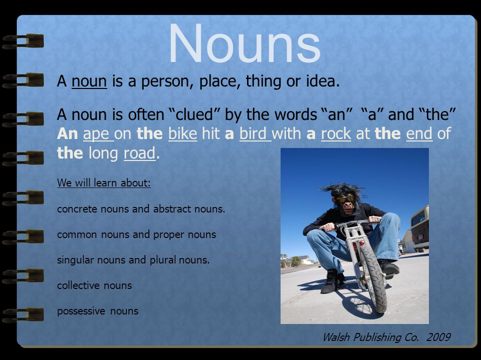 Nouns A noun is a person, place, thing or idea.