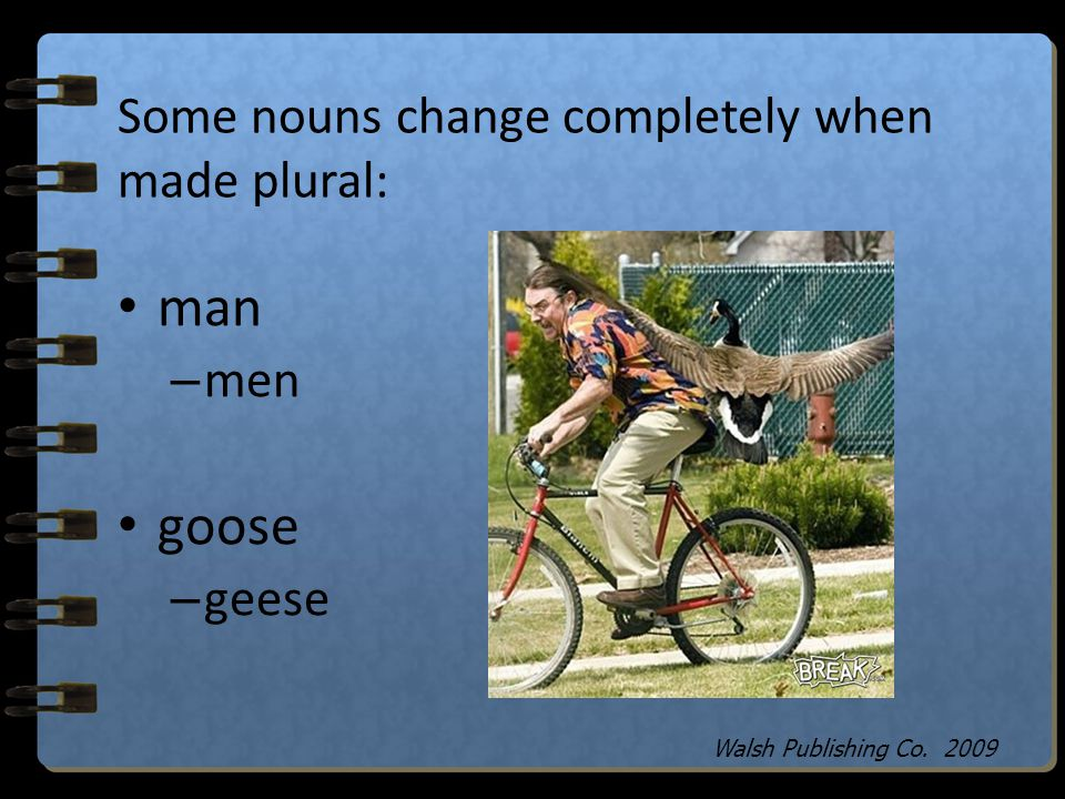Some nouns change completely when made plural: