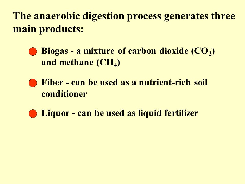 The anaerobic digestion process generates three main products:
