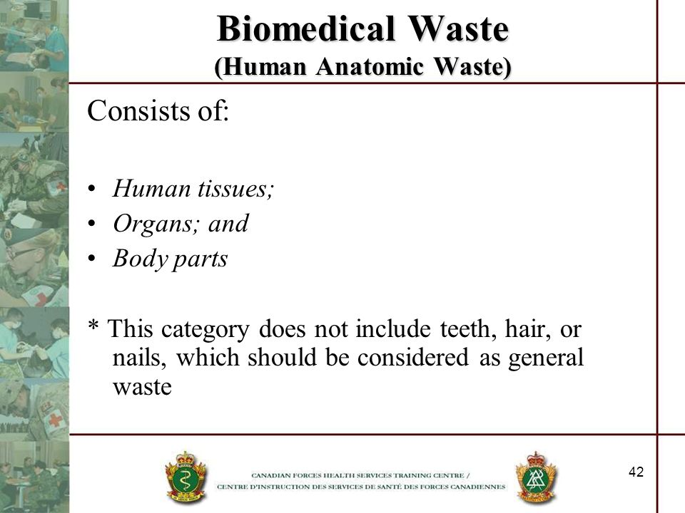 Biomedical Waste (Human Anatomic Waste)