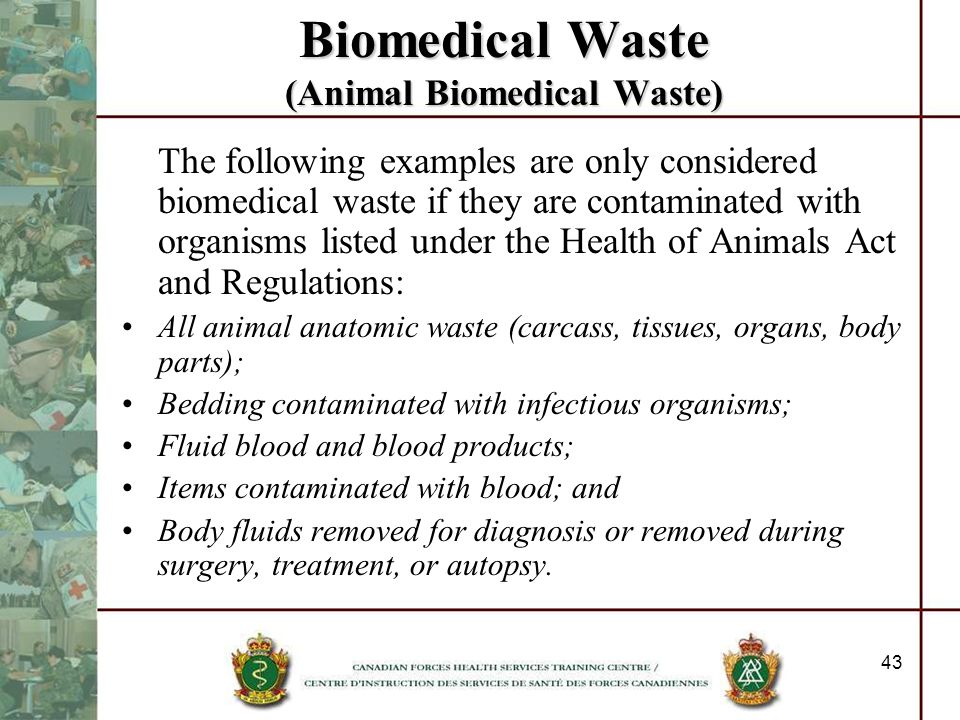 Biomedical Waste (Animal Biomedical Waste)
