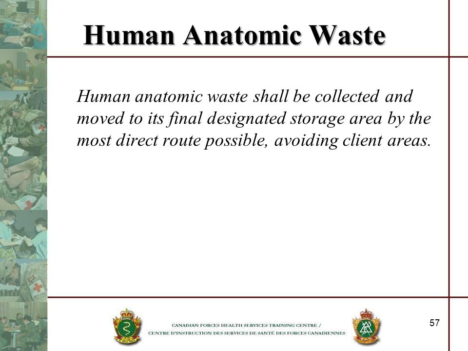 Human Anatomic Waste