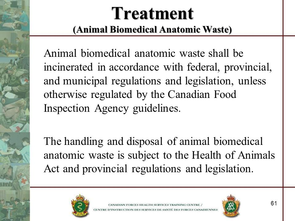 Treatment (Animal Biomedical Anatomic Waste)