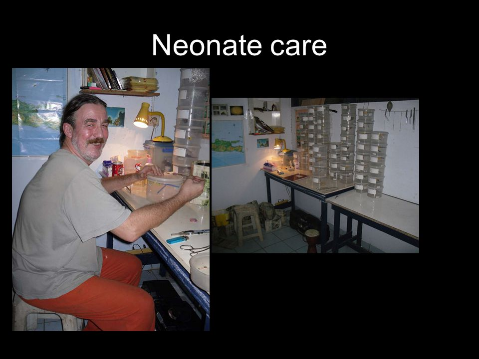 Neonate care