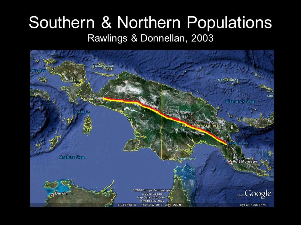 Southern & Northern Populations Rawlings & Donnellan, 2003