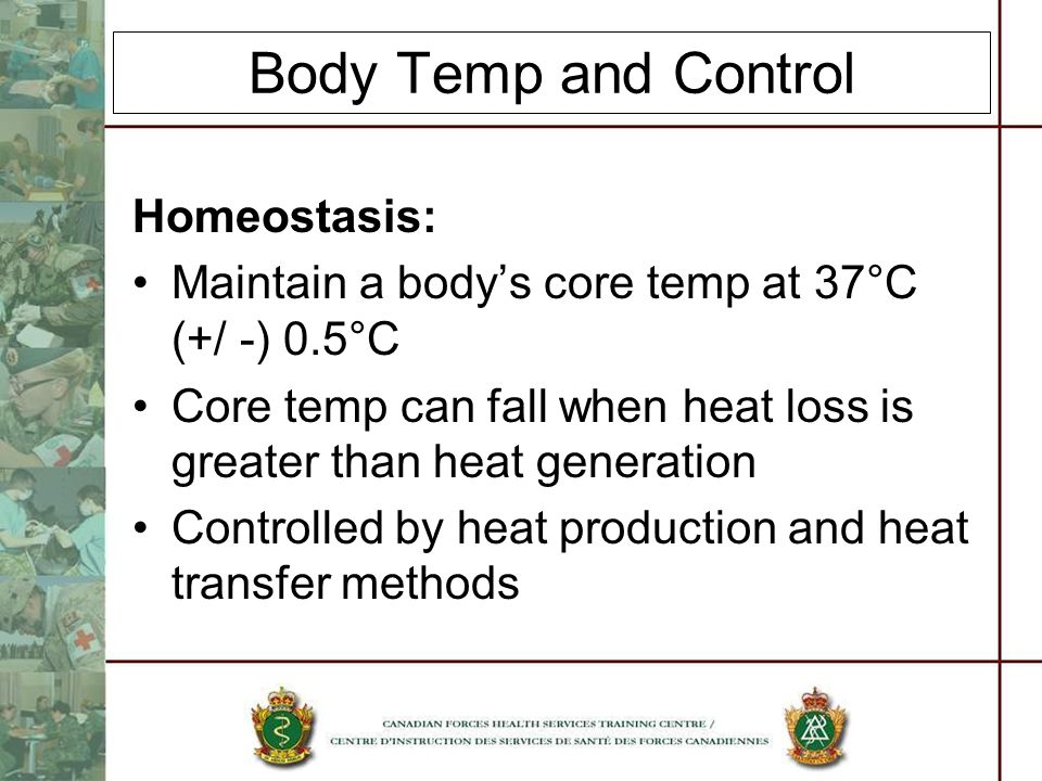 Body Temp and Control Homeostasis: