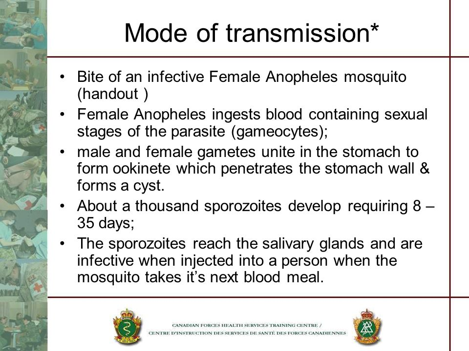 Mode of transmission* Bite of an infective Female Anopheles mosquito (handout )