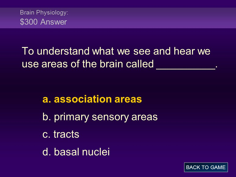 Brain Physiology: $300 Answer