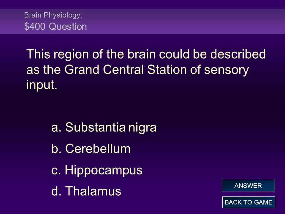 Brain Physiology: $400 Question