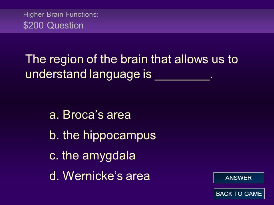 Higher Brain Functions: $200 Question