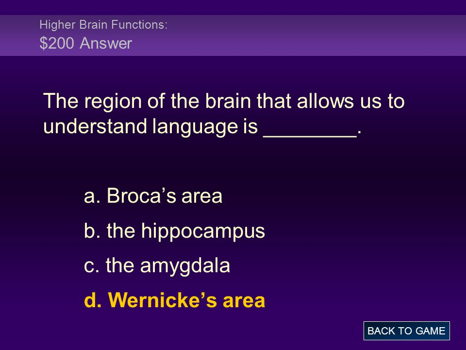 Higher Brain Functions: $200 Answer
