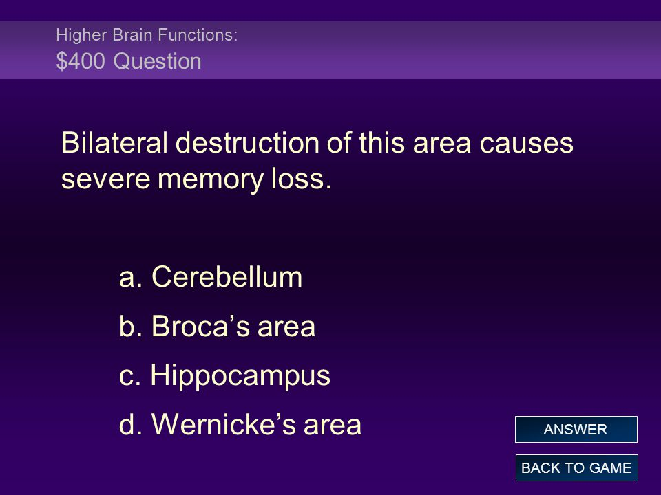 Higher Brain Functions: $400 Question