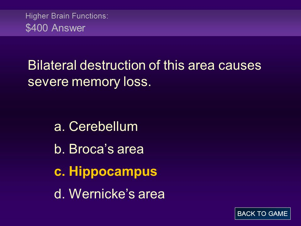 Higher Brain Functions: $400 Answer