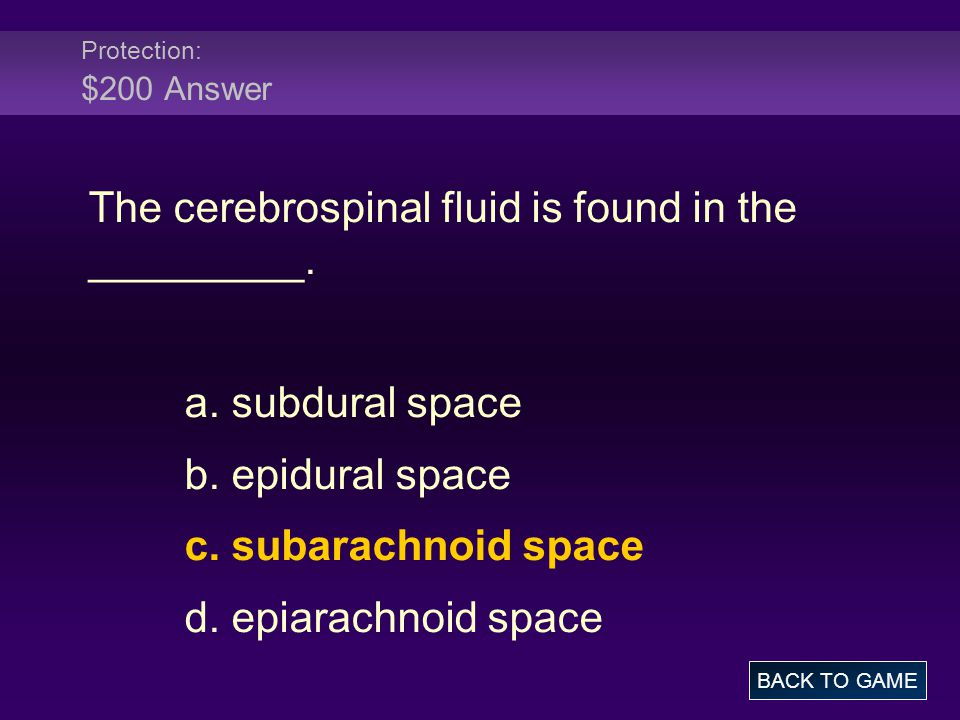 The cerebrospinal fluid is found in the _________.