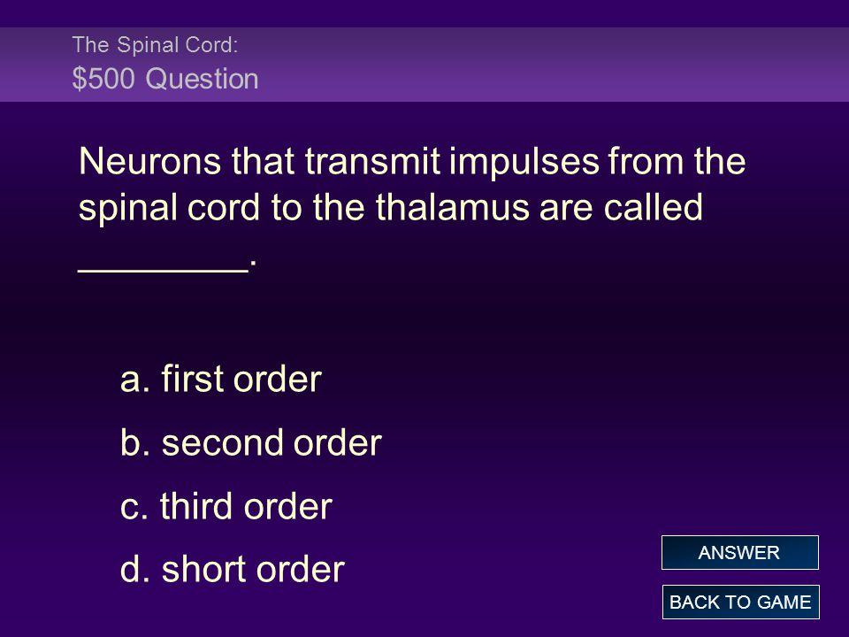 The Spinal Cord: $500 Question