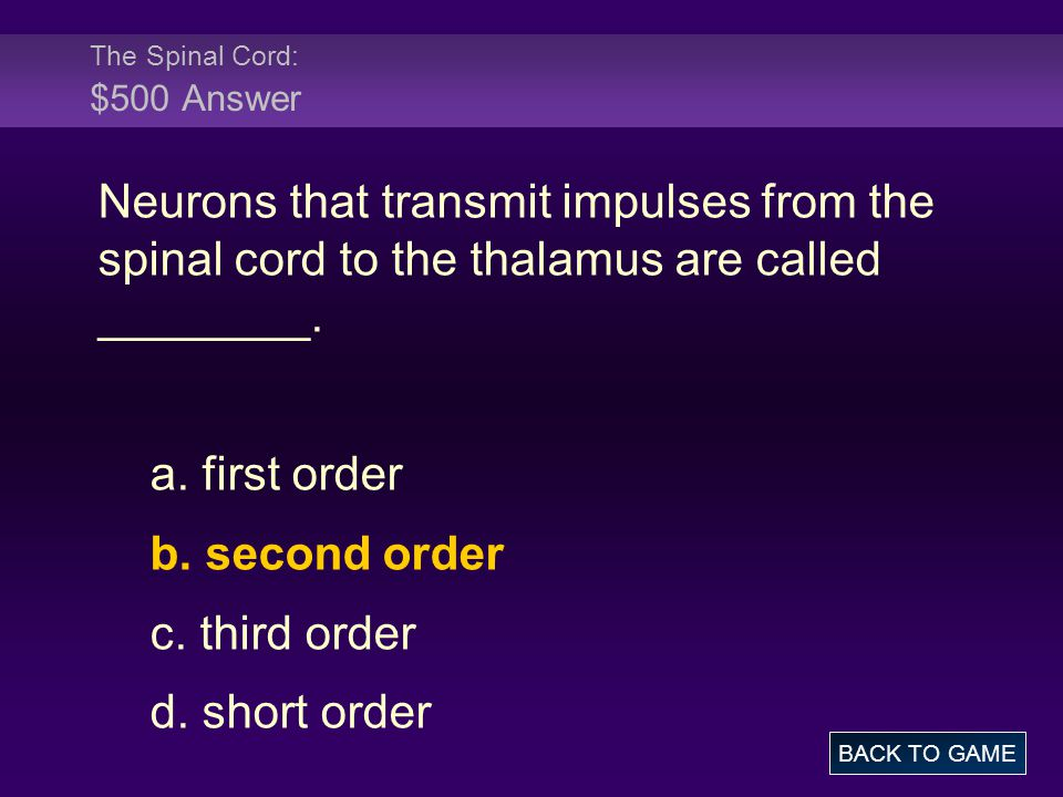 The Spinal Cord: $500 Answer