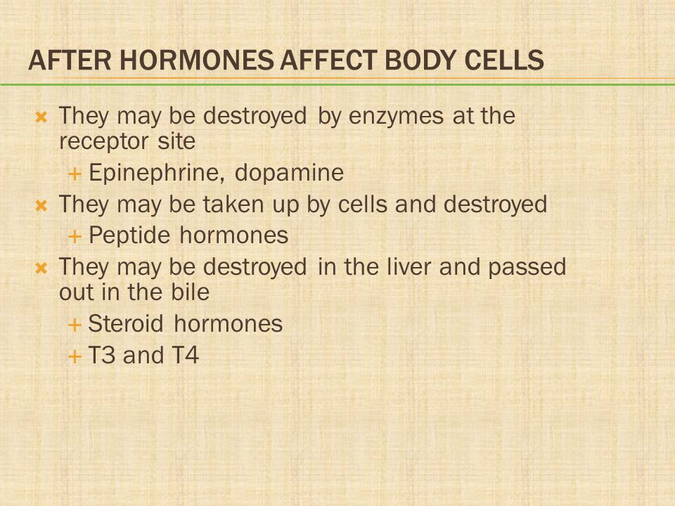 After Hormones Affect Body Cells