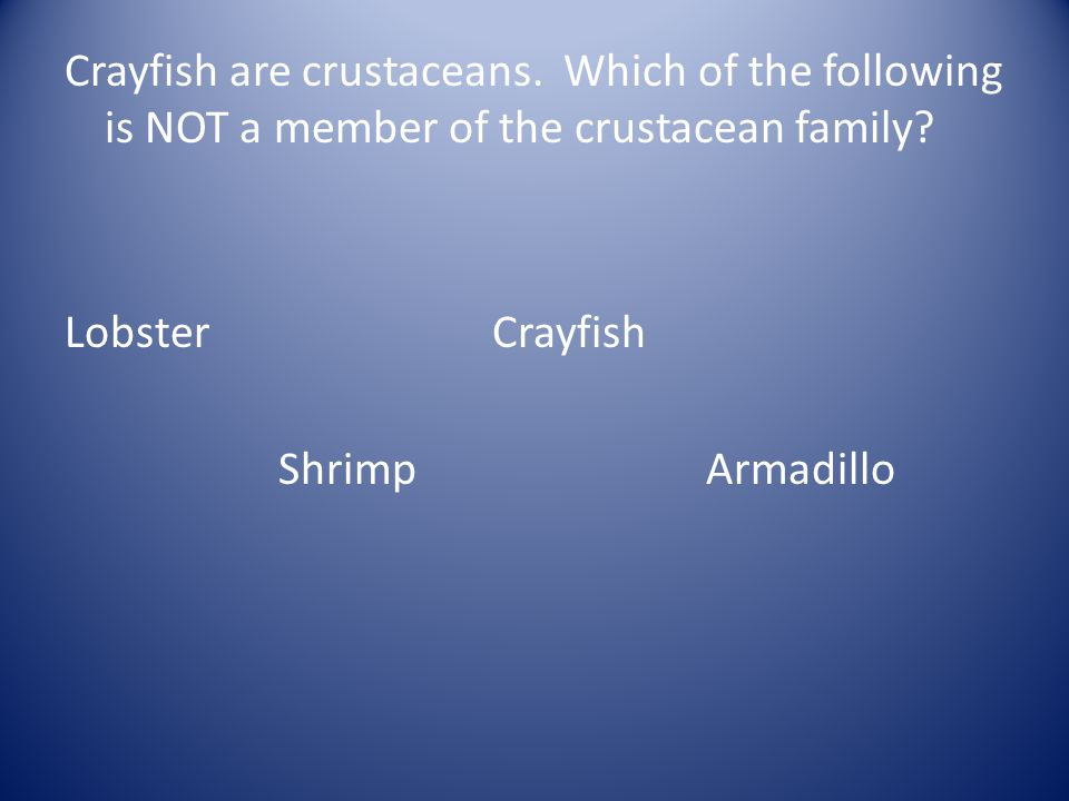 Crayfish are crustaceans