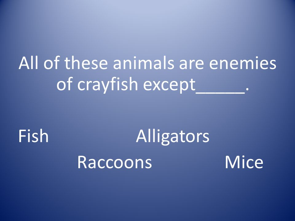 All of these animals are enemies of crayfish except_____