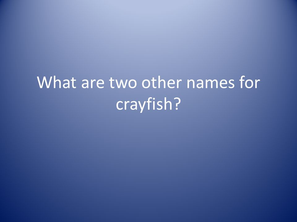 What are two other names for crayfish