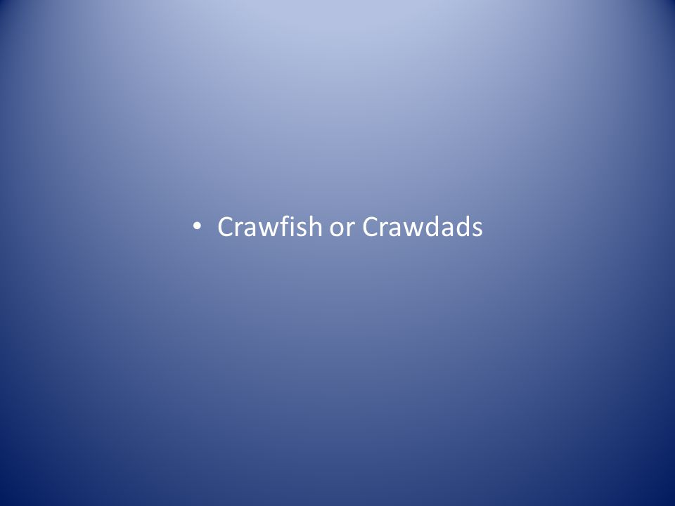 Crawfish or Crawdads