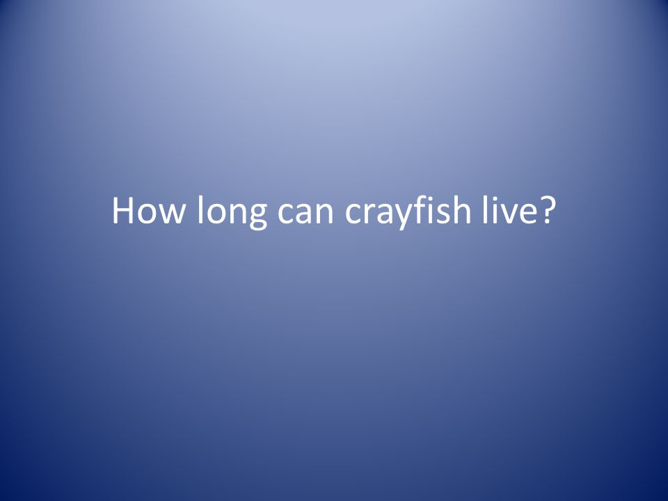 How long can crayfish live