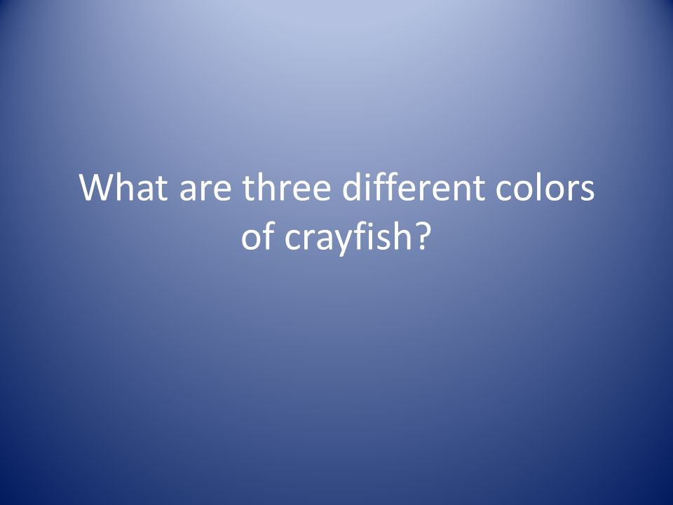What are three different colors of crayfish