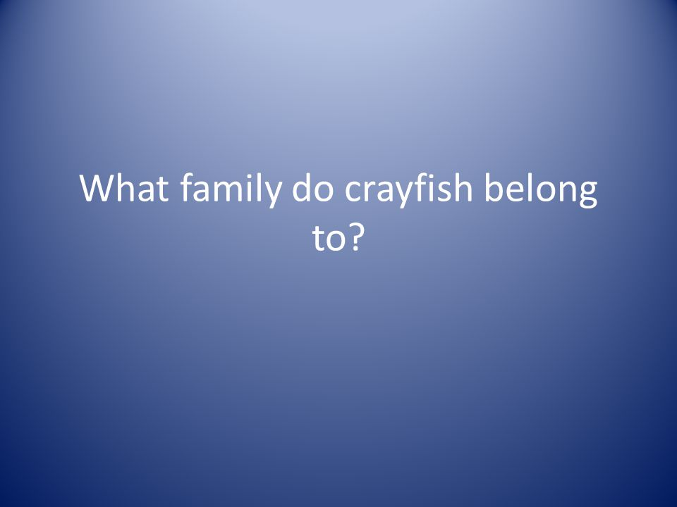 What family do crayfish belong to