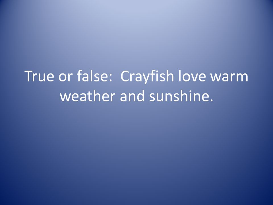 True or false: Crayfish love warm weather and sunshine.