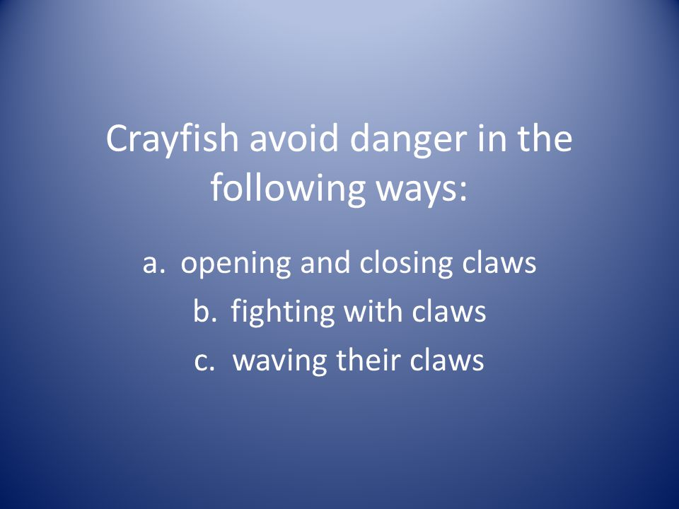 Crayfish avoid danger in the following ways: