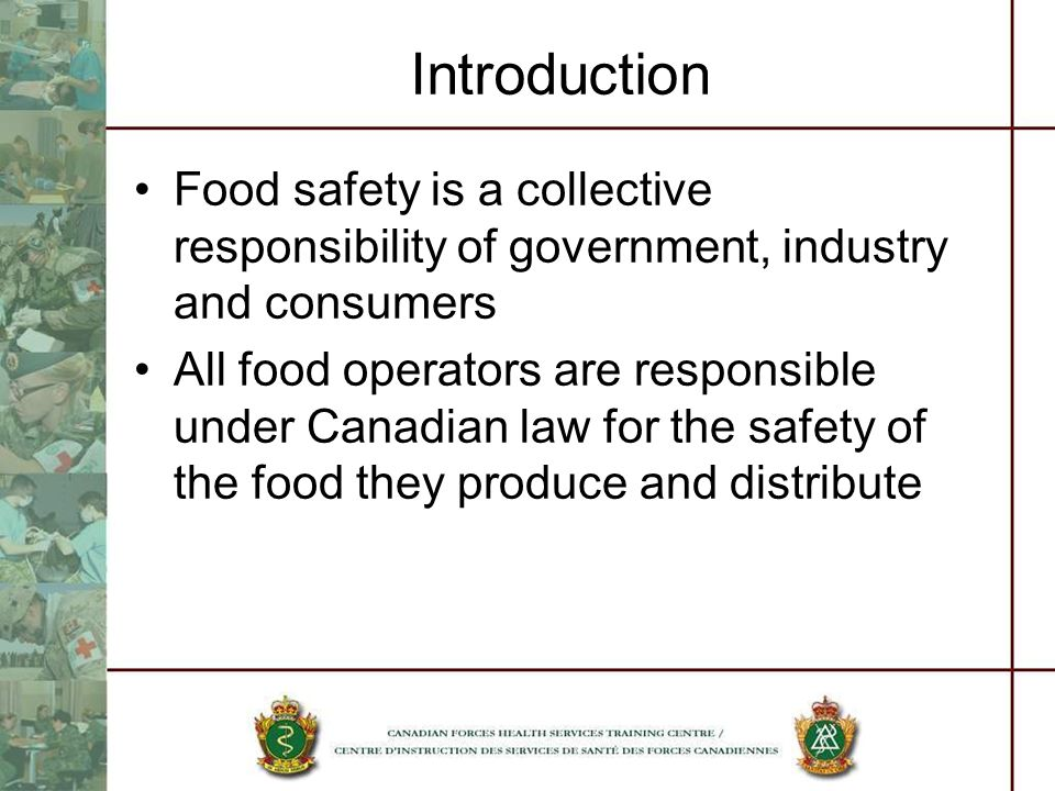 Introduction Food safety is a collective responsibility of government, industry and consumers.
