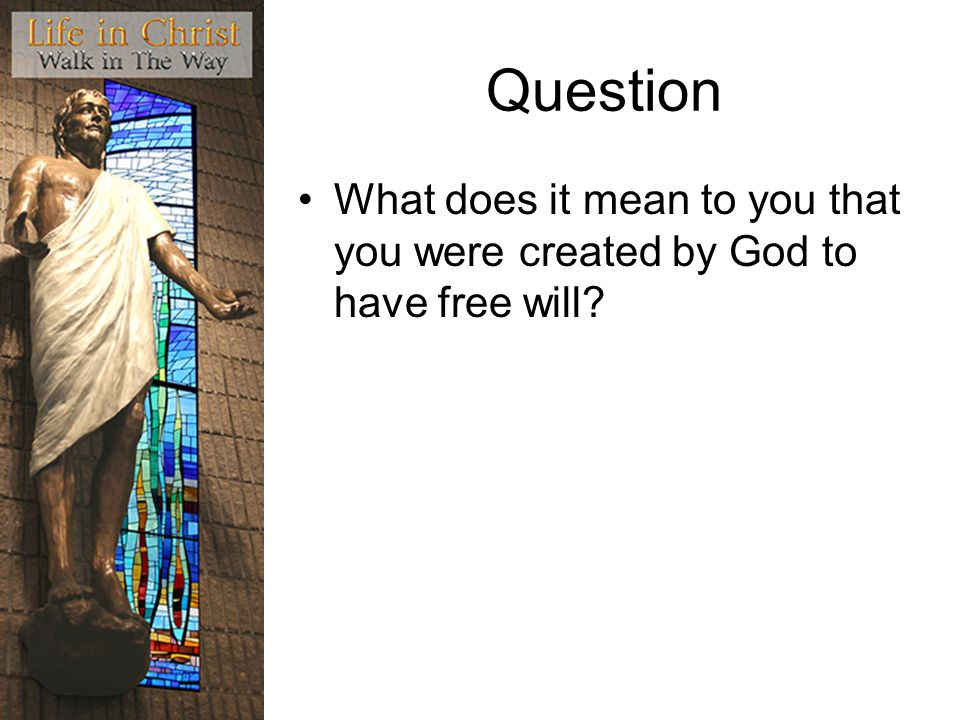 Question What does it mean to you that you were created by God to have free will