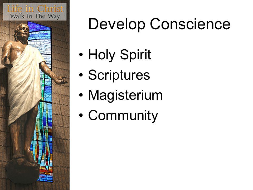 Develop Conscience Holy Spirit Scriptures Magisterium Community