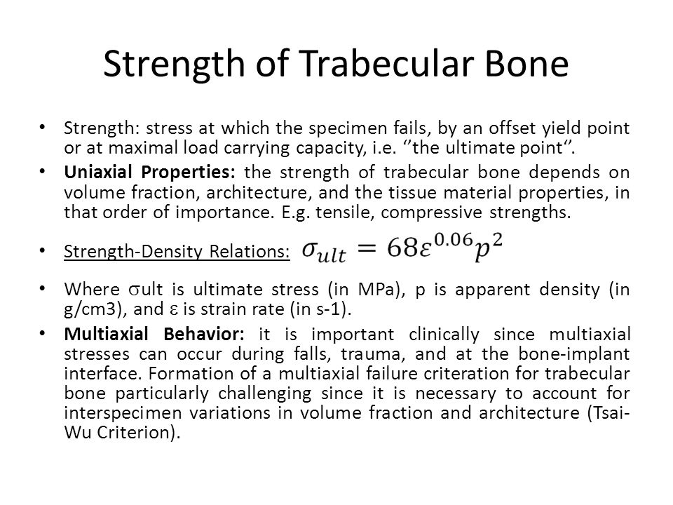 Strength of Trabecular Bone