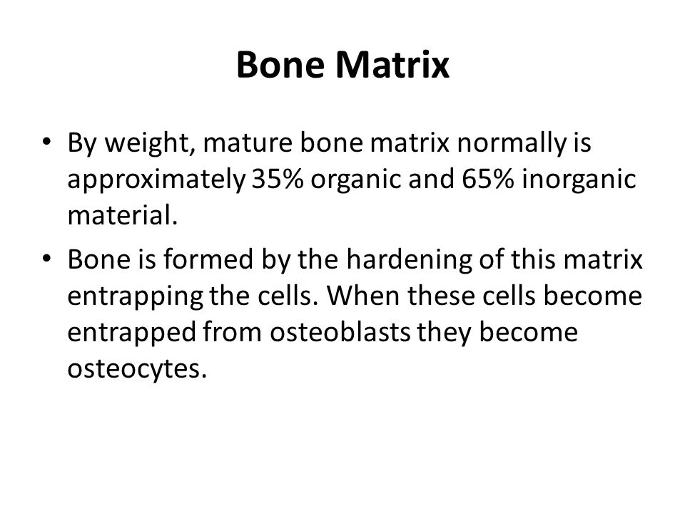 Bone Matrix By weight, mature bone matrix normally is approximately 35% organic and 65% inorganic material.
