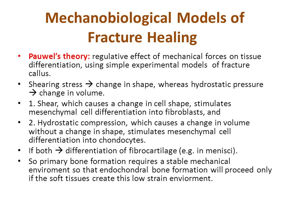 Mechanobiological Models of Fracture Healing