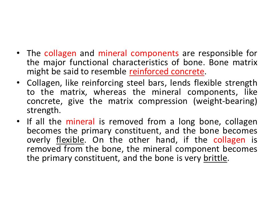 The collagen and mineral components are responsible for the major functional characteristics of bone. Bone matrix might be said to resemble reinforced concrete.
