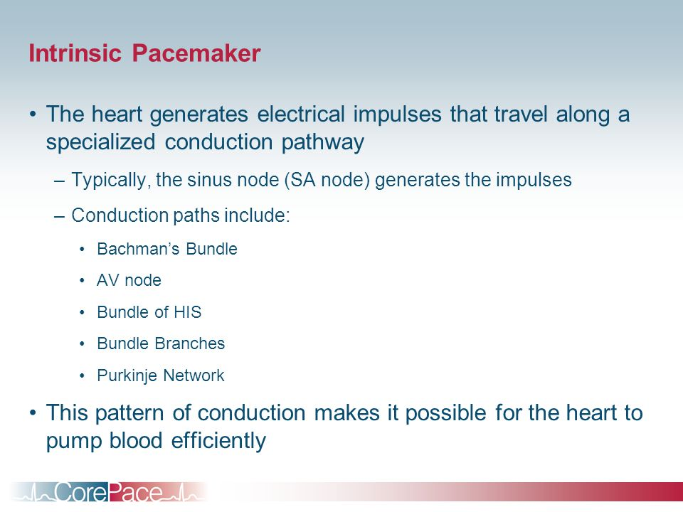 Intrinsic Pacemaker The heart generates electrical impulses that travel along a specialized conduction pathway.