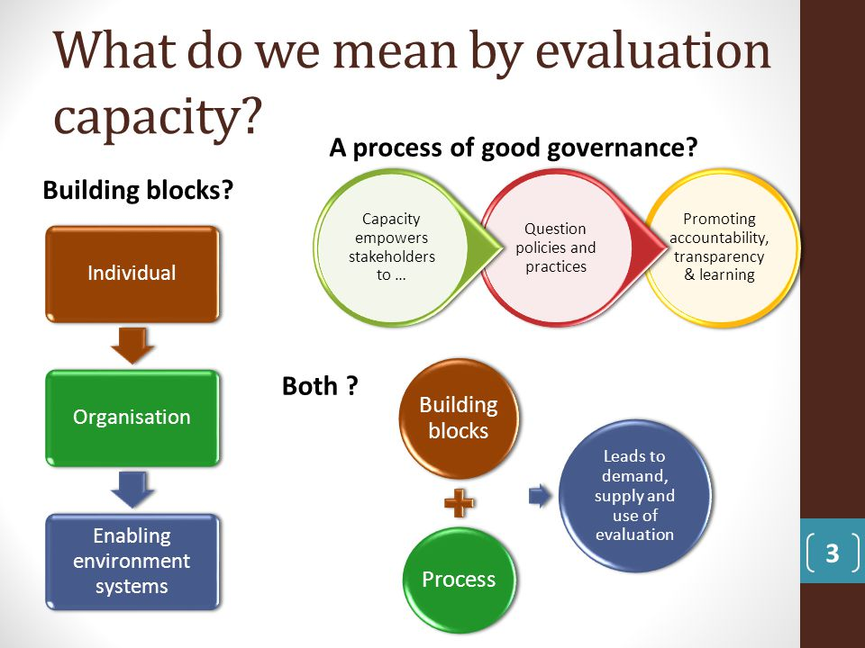 What do we mean by evaluation capacity