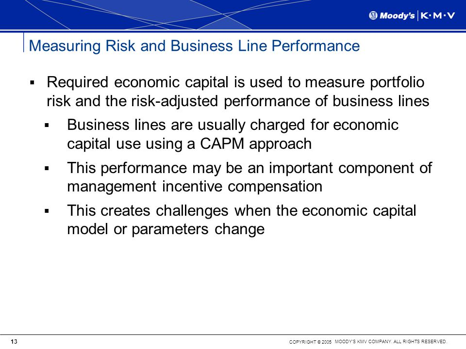 Measuring Risk and Business Line Performance