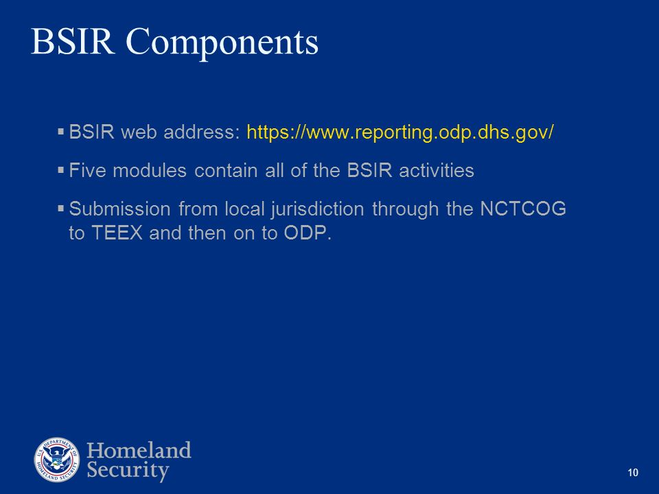 BSIR Components BSIR web address: https://www.reporting.odp.dhs.gov/